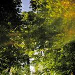 Paris/Bois de Vincennes