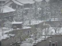 Yunnan 2005
