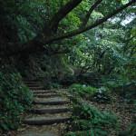 Taipei/Yang Ming Shan